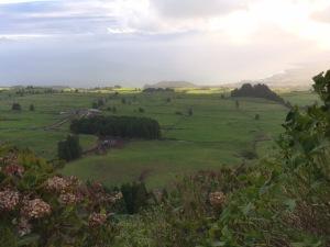 pastures (jpeg)